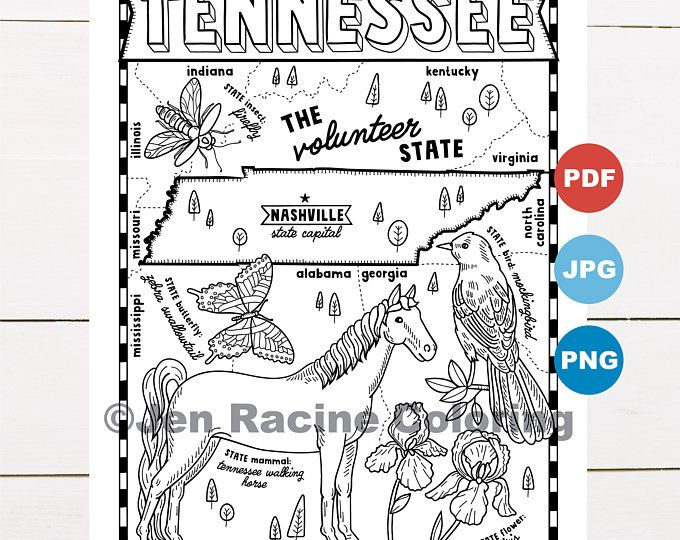 Tennessee Coloring Page From The United States Of America Coloring Book Find On Book On Amazon And This Printable Coloring Pages Coloring Pages Coloring Books