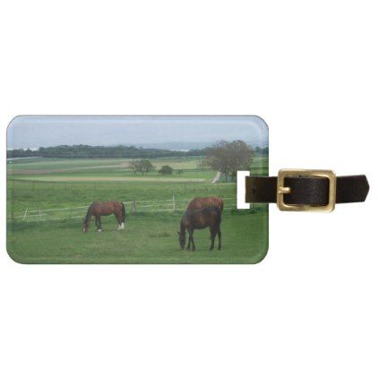 horse lovers luggage tag - photography picture cyo special diy