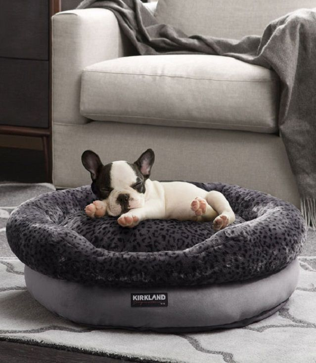 your pet will sleep soundly in this kirkland signature luxury pet bed which features