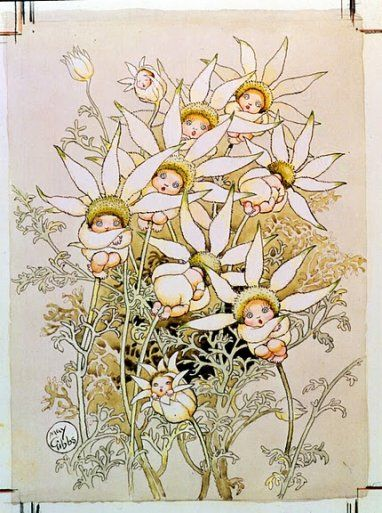 May Gibbs' Flower Babies