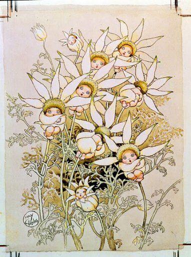 May Gibbs' Flower Babies