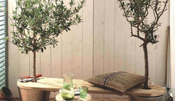 Envie d'égayer votre déco intérieure ? Pensez à ajouter quelques touches de verdure tout en libérant votre côté bricolo avec ces trois créations végétales. Pots de fleurs suspendus, banc arboré ou cloison verte, il y en aura pour tous les goûts !