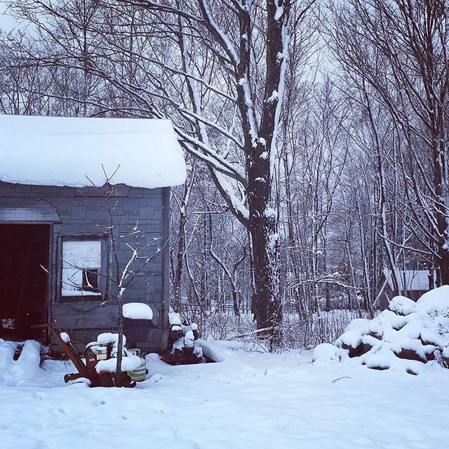Petit shack ☃️ #cotedusud #neige #vacancesalacampagne #maregion #quebecoriginal #explorecanada #explore #snowday #sjpjcreatif #canadiancreatives #shack #chaudiereappalaches