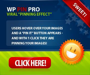 WP Pin Pro-from Jason and Will-top flight...only tools I use.