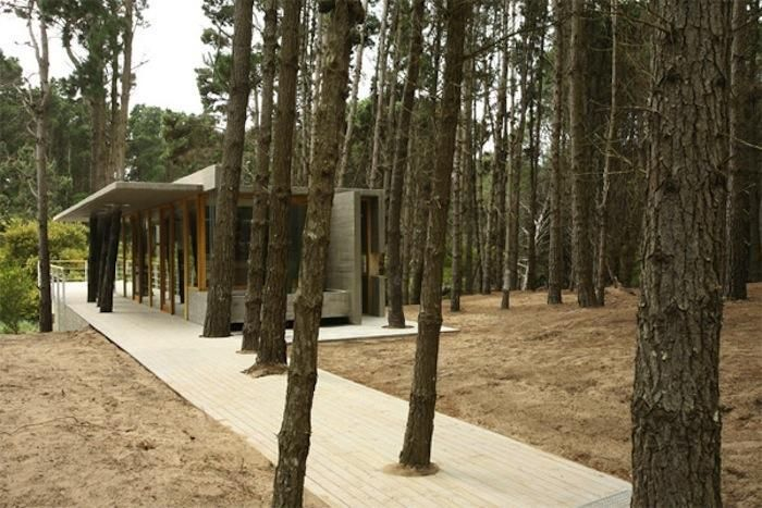 For The Sake Of The Trees, We'll Find A Work-Around; Here's 43 Examples