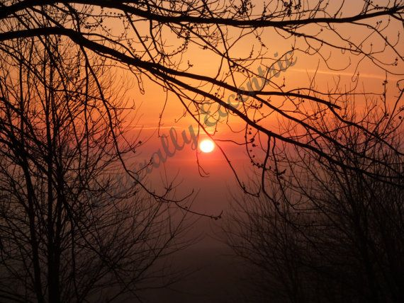 Red Sunrise Photography  Nature Photography of by faeriesndragons, $8.00