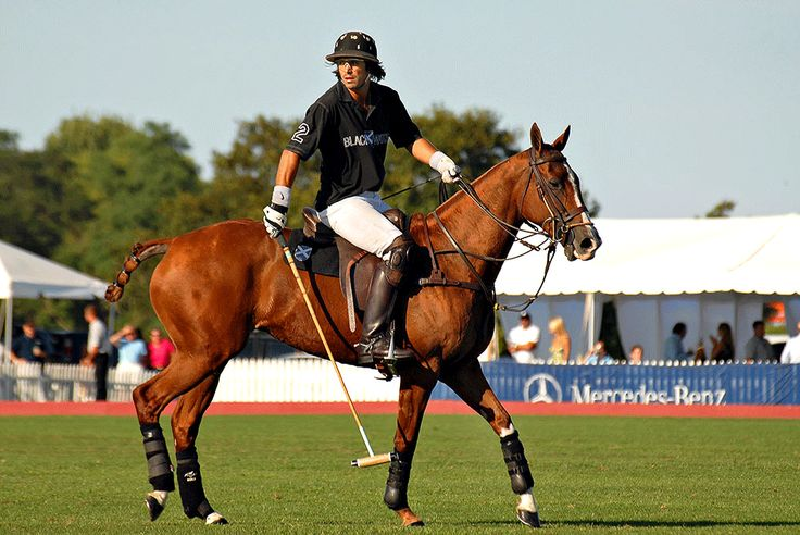 Nacho Figueras, Argentinian Polo player... don't know what is more beautiful.  The horse or the rider...yum