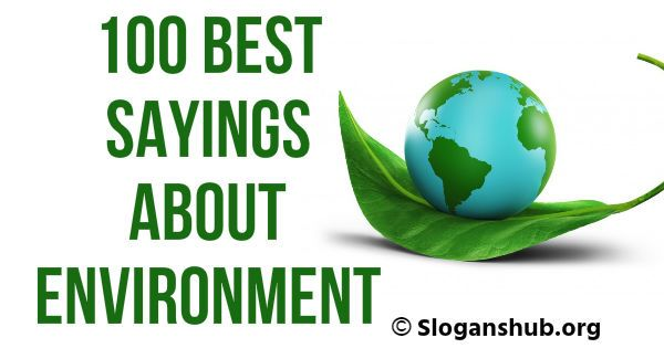 100 Best Sayings About Environment Best Quotes Sayings