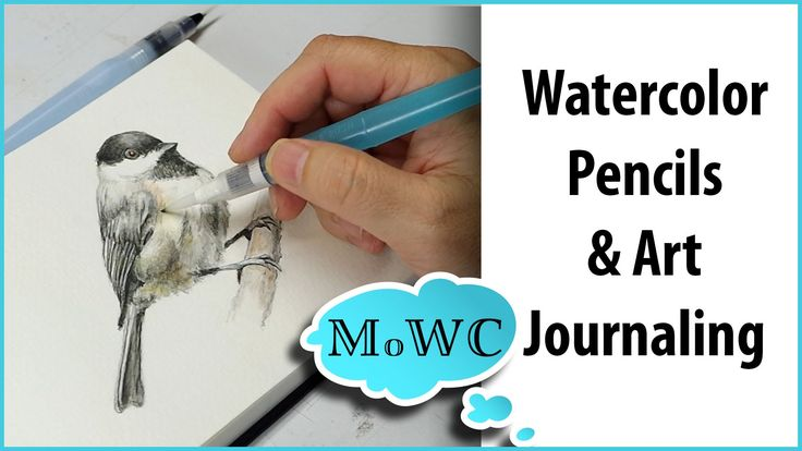 Art journaling a Carolina Chickadee with Prismacolor #watercolorpencils and Strathmore #watercolorjournal
