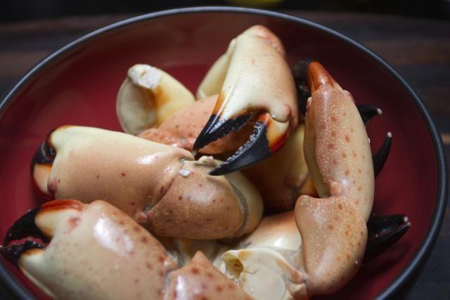 Hungry? Eat at One of These Top Miami Restaurants: Joe's Stone Crabs