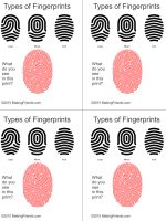 MakingFriends Printable Fingerprint Types for Junior Detective Clue Game Simple illustration helps your Junior detectives learn to read finger prints. Print four cards per page.