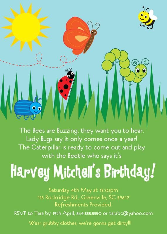 Bug Insects Birthday Party Invitation Summer Butterfly Bee