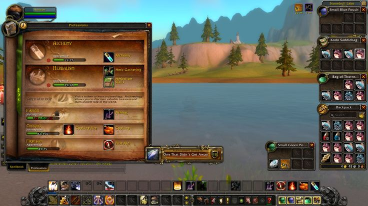 Starter Account catching a 15 Pound Mud Snapper (it is possible!) #worldofwarcraft #blizzard #Hearthstone #wow #Warcraft #BlizzardCS #gaming