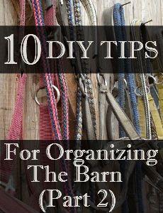 Savvy Horsewoman: 10 DIY Tips - Organizing the Barn (Part 2)