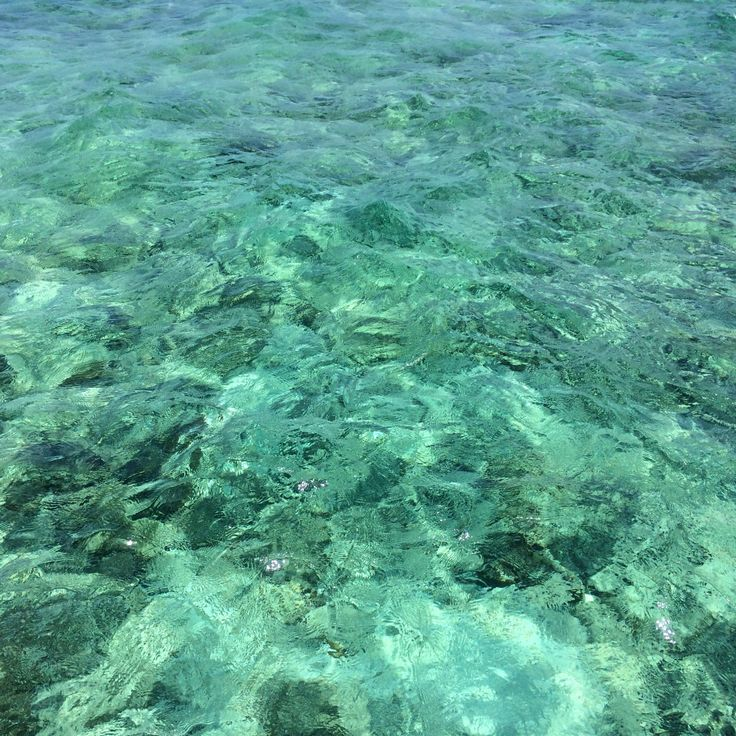 Crystal clear in the Maldives | Viceroy Maldives