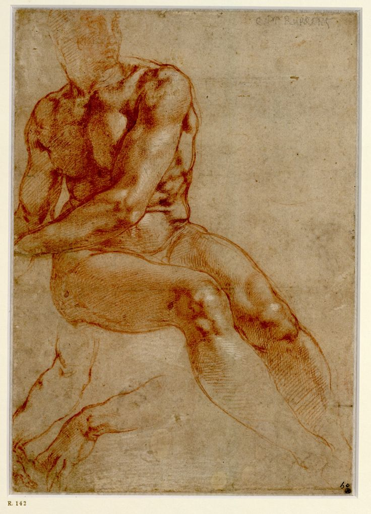 Michelangelo, Sitzender Jünglingsakt und zwei Armstudien, 1510-11 © Albertina, Wien  #Michelangelo #Renaissance #Drawing #GraphicArt #GraphicCollection #Masterpiece