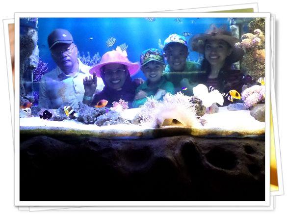 Hanya ada satu akuarium yang menyediakan area foto, sempatkan cari area ini ya... Ruangannya gelap, banyak yang ga tau lohhh..