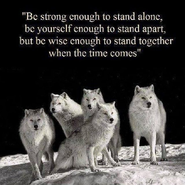 """""""Be strong enough to stand alone, be yourself enough to stand apart, but be wise enough to stand together when the time comes."""""""