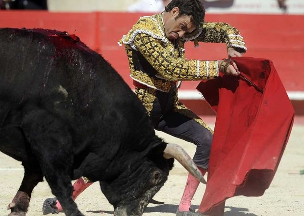 ¿Quién ha sido el torero triunfador del 2012?Por ahora: José Tomás: 21%; El Juli 17% ¡Sigue votando en nuestra encuesta! http://twtpoll.com/u7meja