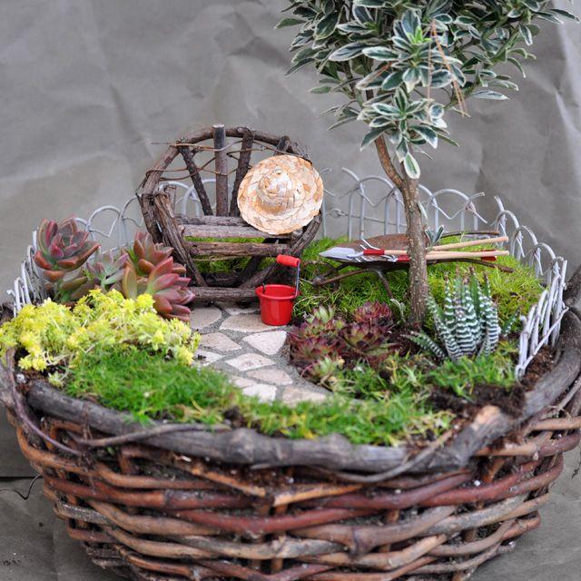Klein ,fein und wirklich hübsch:der Miniaturgarten im Korb.