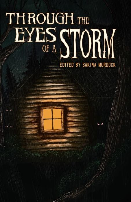"""My short story, """"The Last Son of Olympus"""" made it into Rainstorm Press' newest anthology, which is called """"Through the Eyes of a Storm"""".  It'll be released in August 2013, so keep your eyes open for it!"""