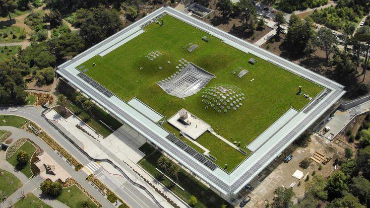 Academia de las Ciencias de California, San Francisco. En esta instalación, buscando reducir la huella de carbono, se implantaron jardines con ventanas para aprovechar la luz solar