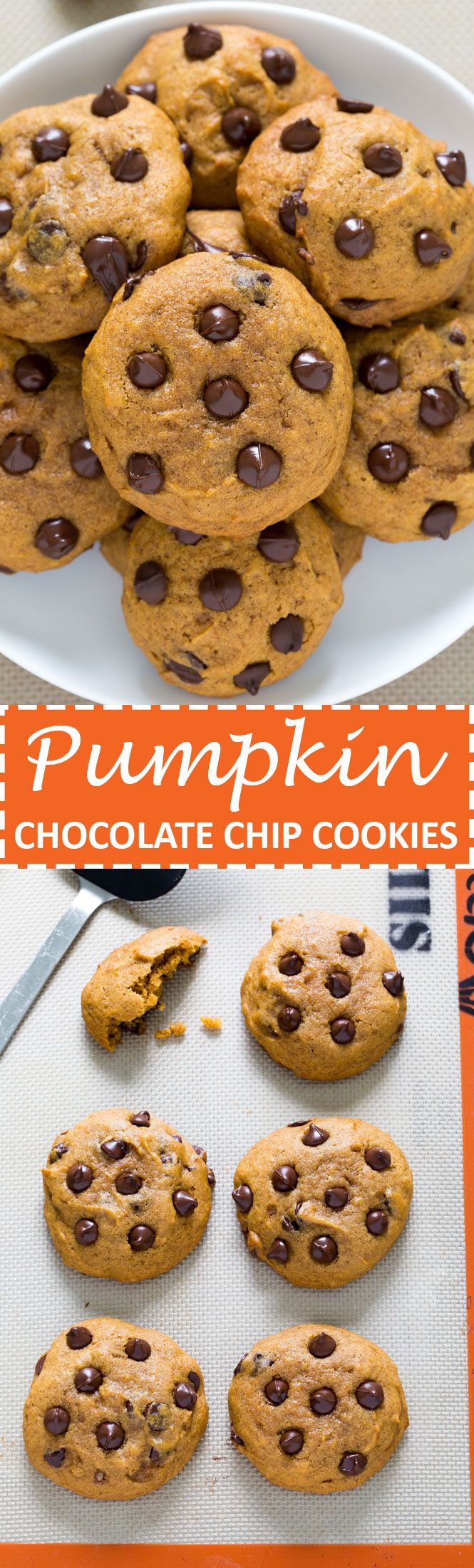 Soft and Cakey Pumpkin Chocolate Chip Cookies loaded with semi-sweet chocolate chips. Thick, spiced and super easy to make. The perfect cookie for Fall.- [someone else's caption, very slightly modified]
