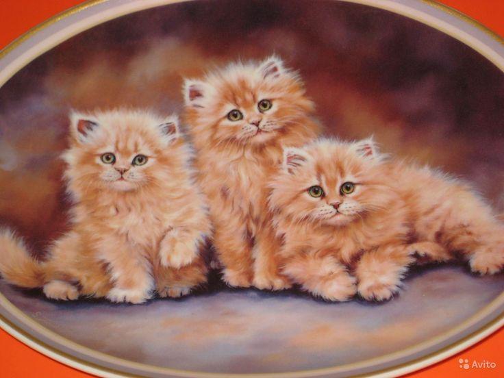Настенная овальная тарелка Кот.   Декоративная настенная фарфоровая тарелка Рыжие котята. Размер 17 см *22 см,Германия