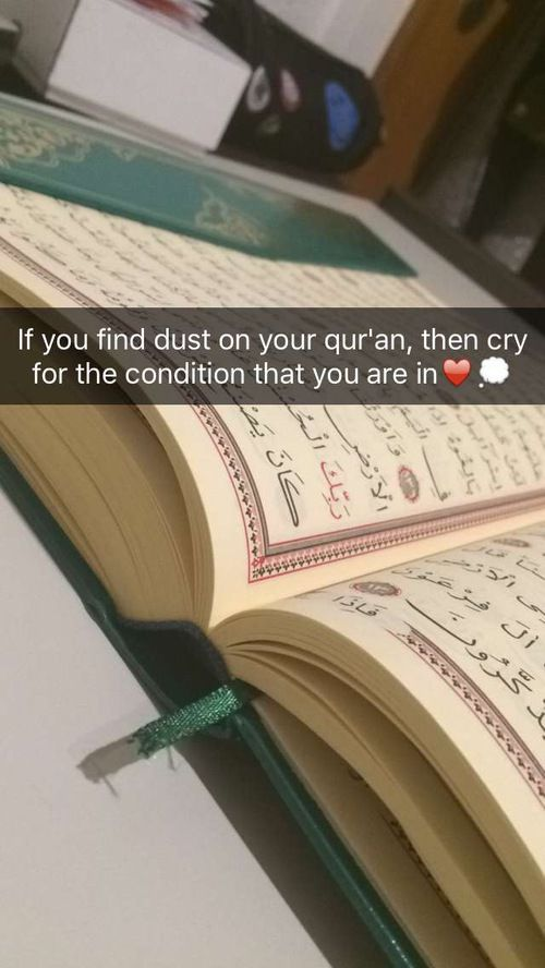 Don't wait another moment. Dust off your Quran and fall in love with Allah's words. <3