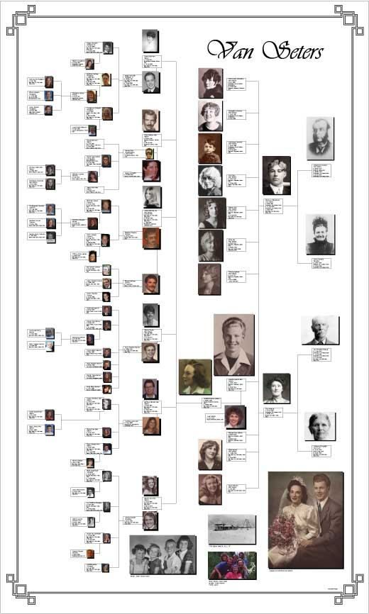 Best 25+ Family tree poster ideas on Pinterest Greek family tree - family tree example