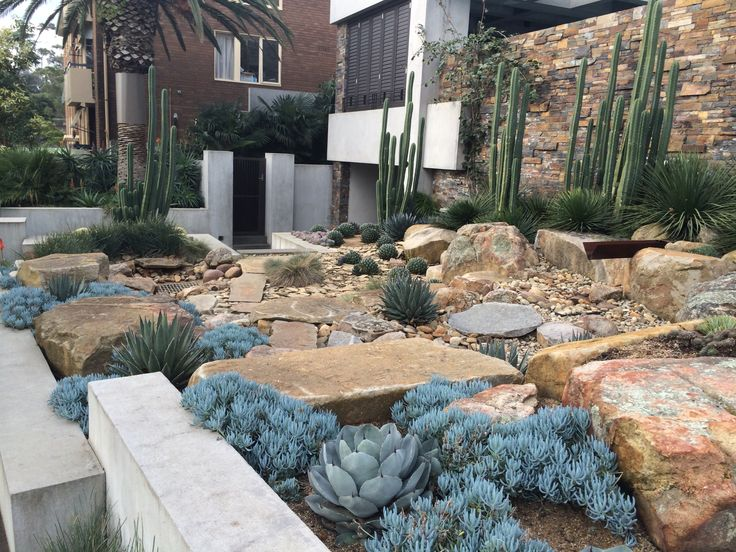 Xeriscape landscape design pinterest more gardens for Xeriscape garden designs