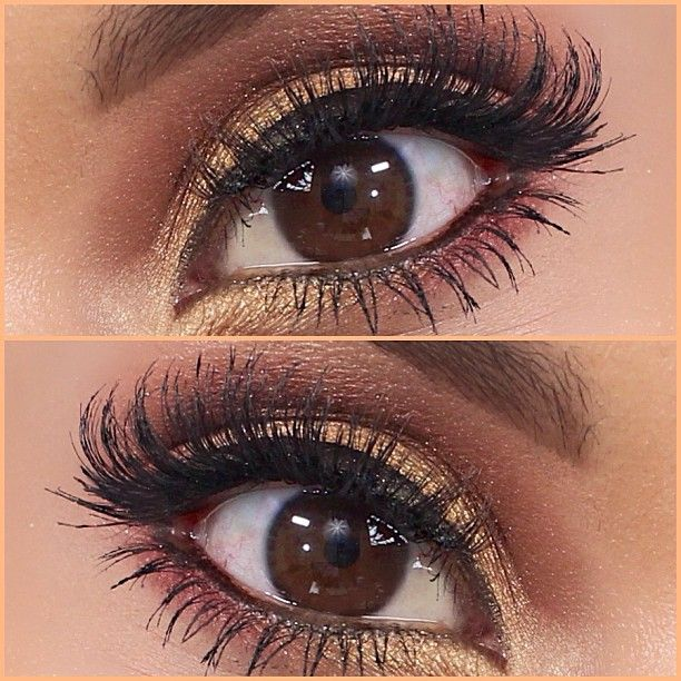 .Eye Makeup, Eye Shadows, Brown Eye, Makeup Ideas, Homecoming Makeup, Makeup Looks, Makeup Eye, Eyeshadows, Gold Eye