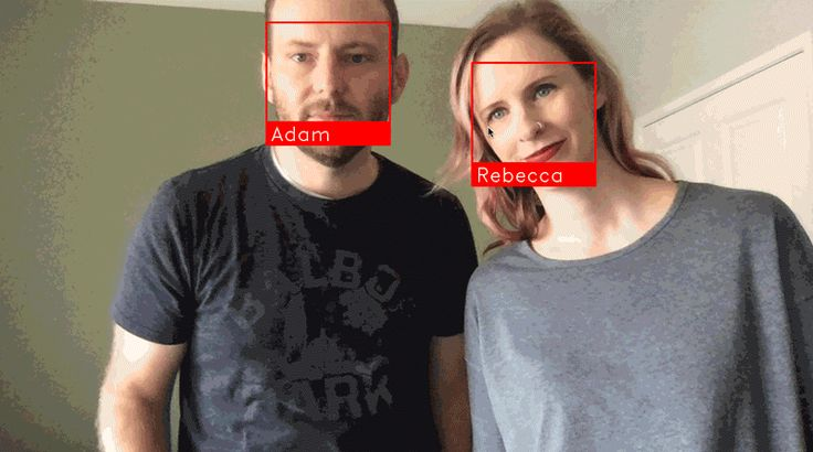 face_recognition - The world's simplest facial recognition api for Python and the command line