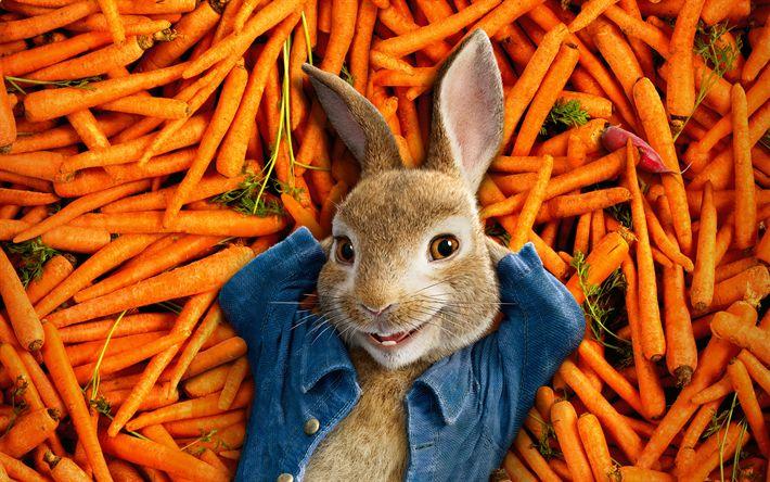 Download wallpapers Peter Rabbit, 4k, poster, 2018 movie, farmer, carrot, rabbit, 3d-animation