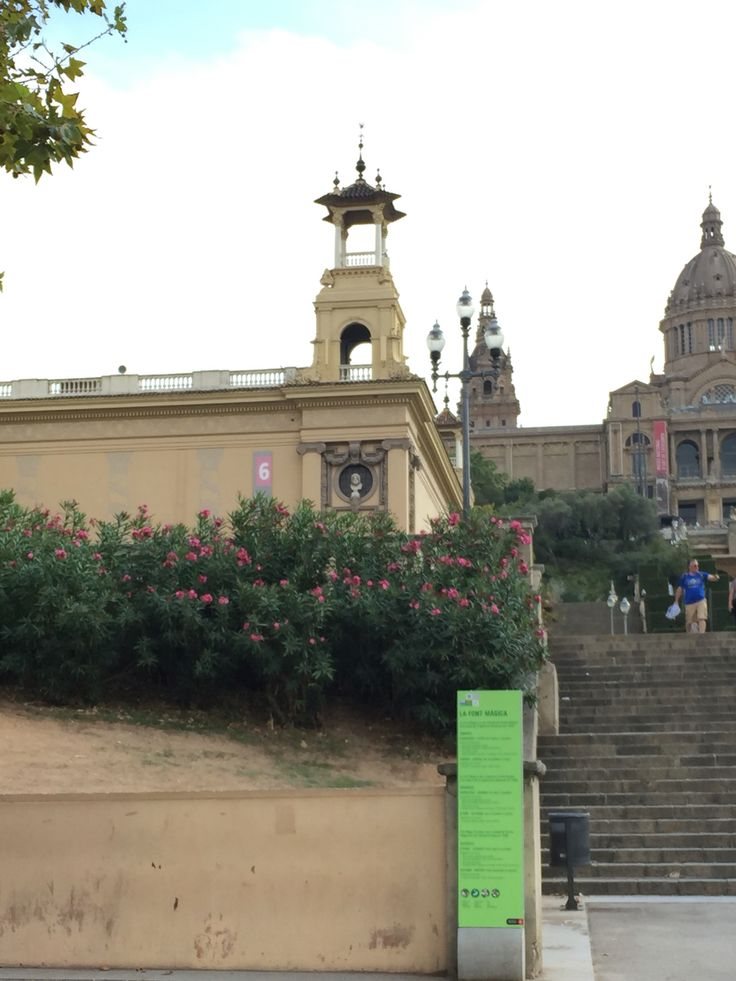 The museo nacional d'art de Catalunya is a beautiful old building, with carefully placed and designed pieces of shubbery and flowers leading up to it. While the building does not have nature engraved or designed in the stone, it is clearly incorporated in the overall aesthetic of the area.