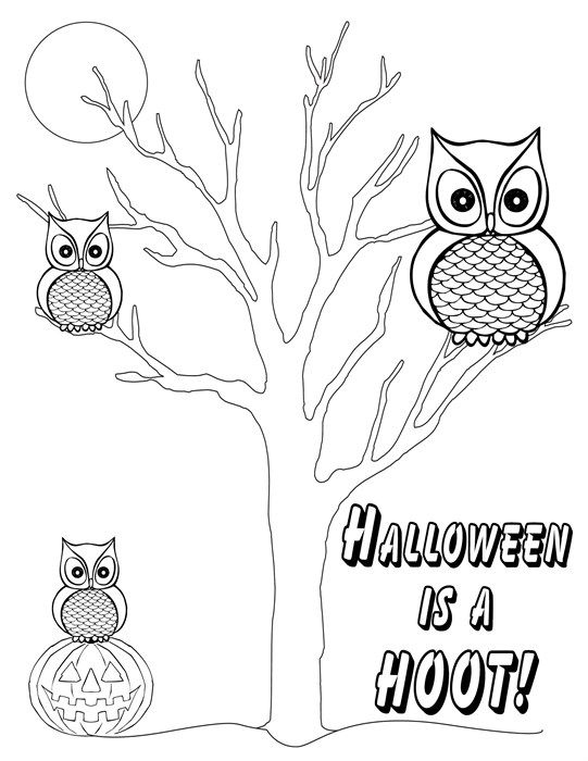 quot Halloween Is A Hoot quot Free Printable Halloween Coloring