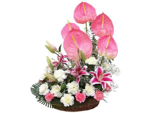 Gift flowers online 214 pinterest exotic collection negle Images