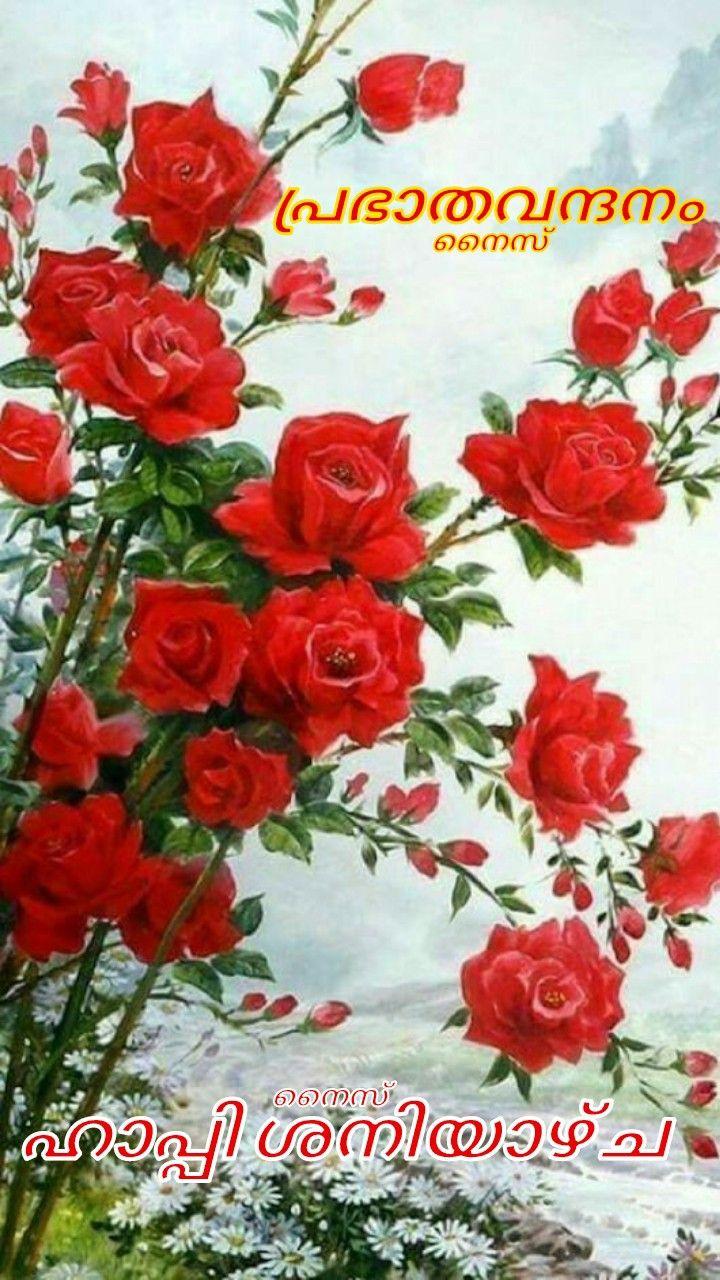 Pin By Eron On Good Morning Saturday Malayalam Good Morning Wishes Good Morning Saturday Morning Wish