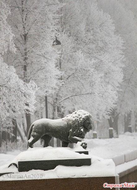 Даже в холодной и иногда тоскливой зиме есть свои прелести. Например, снежно-белый Петербург.