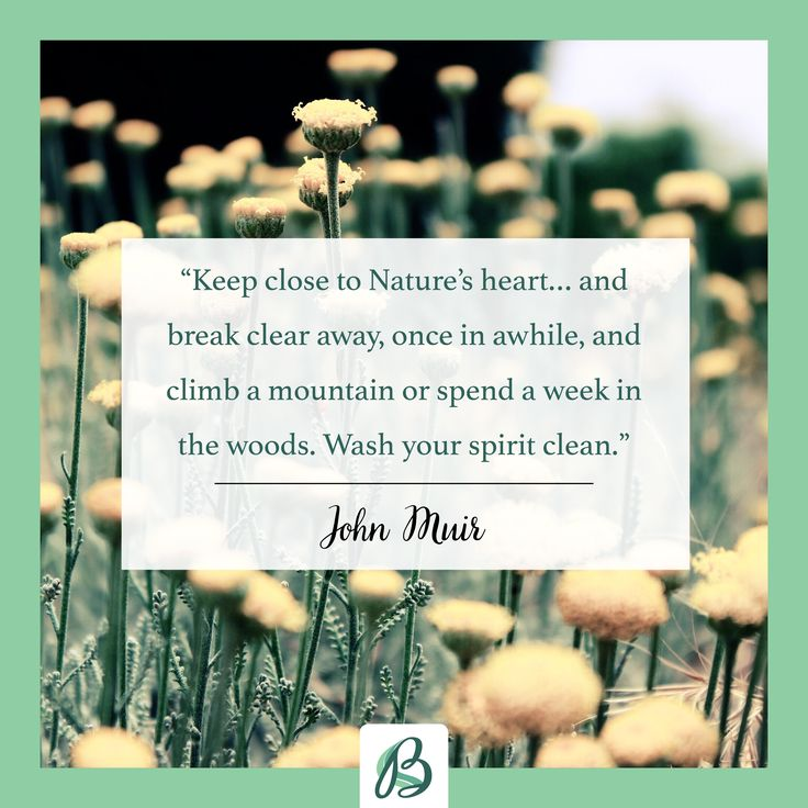 Day To Day Inspirational Quotes: Best 25+ Earth Day Quotes Ideas On Pinterest