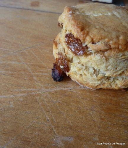 jamie oliver, scones, raisins, scones aux raisins On peut congeler avant cuisson