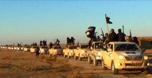 NATO's Terror Hordes in Iraq a Pretext for Syria Invasion..! #Politic #War #Educational #info #Iraq #Syria #political #Obama #Bush #USA #America #Trump #Russia #iran