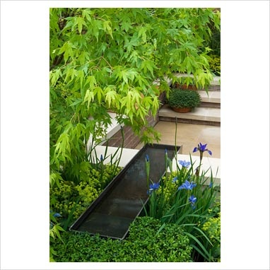 A water rill and sunken seating area in a courtyard garden with planting of Acer, Buxus, Iris and Alchemilla