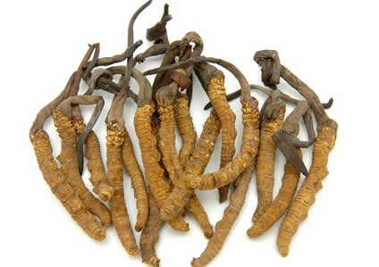 10 herbs to increase vitaliy and energy