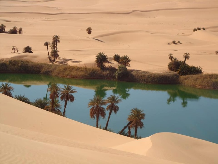 Image result for what do you call imagined oases in the desert