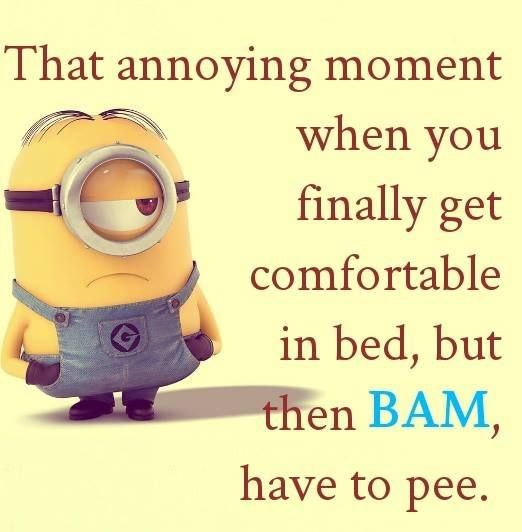 27 Best Minion Puns Images On Pinterest: 25+ Best Ideas About Minion Humor On Pinterest