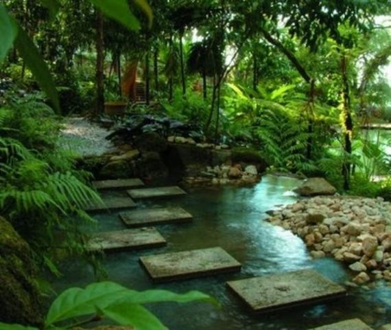 Tropical Garden Design stone wall next to calathea lutea and rhapis sp ponce veridiano garden tropical garden designtropical Tropical Spice Garden Penang Is A Commercial Landscaped Garden Located In Between Batu Ferringhi And