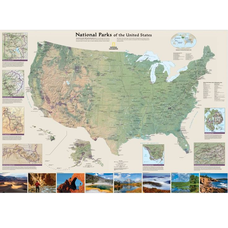 California Map Bear%0A covering letter sample format