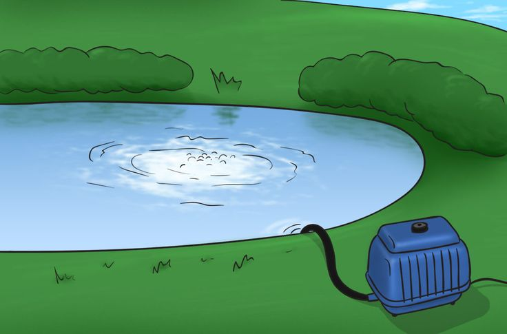 1000 Ideas About Pond Aerator On Pinterest Patio Pond Water Fountain Pumps And Fish Ponds