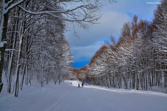"""#ITALIE : #photography Parco Nazionale della Maiella #Abruzzo (Italia)  """""""